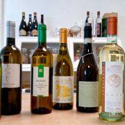una selezione di vini bianchi